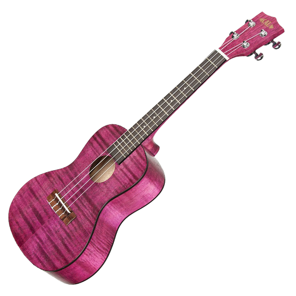 how to play a ukulele song for beginners
